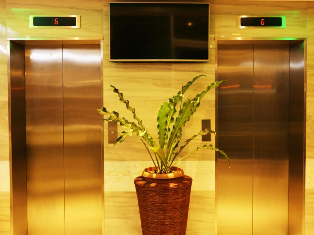 Lobby Green Banana Business Hotel