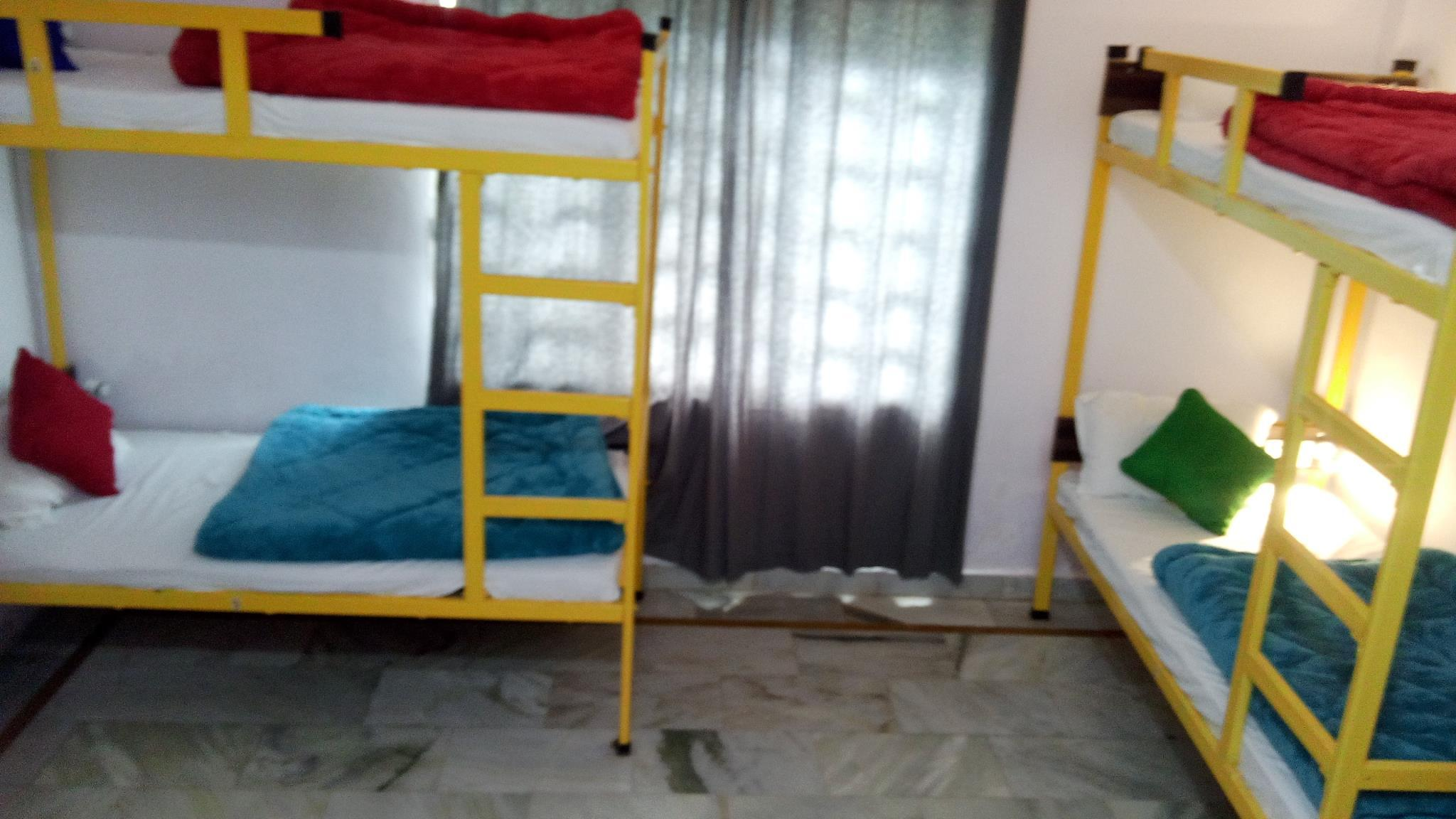 Bunk Bed in 4-Bed Mixed Dormitory Room with Air Conditioning