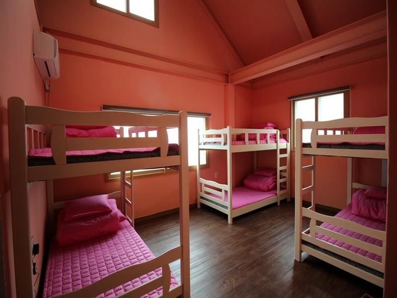 1 seng i 6-sengs sovesal (kvinder) (6-Bed Dormitory -- Female Only)