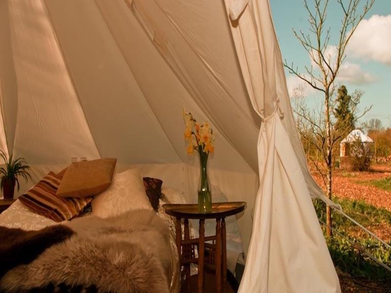 Tent (2 People)