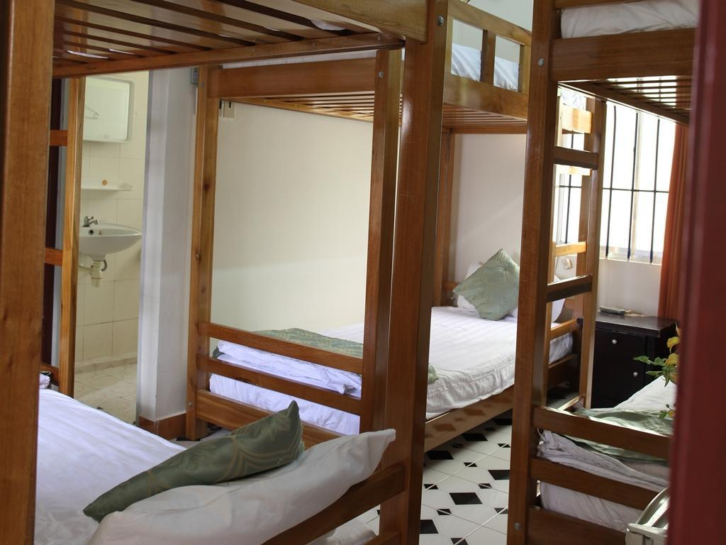 Cama en habitación compartida mixta con 6 camas (Bed in 6 Bed Mixed Dormitory Room)