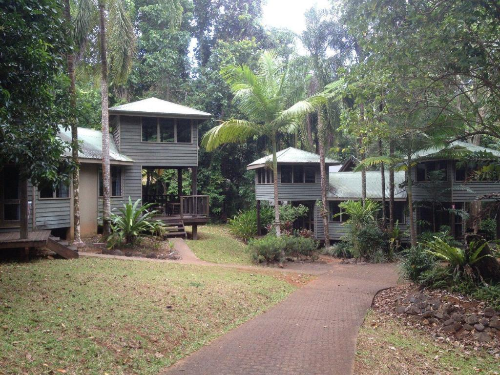 More about Ferntree Rainforest Lodge