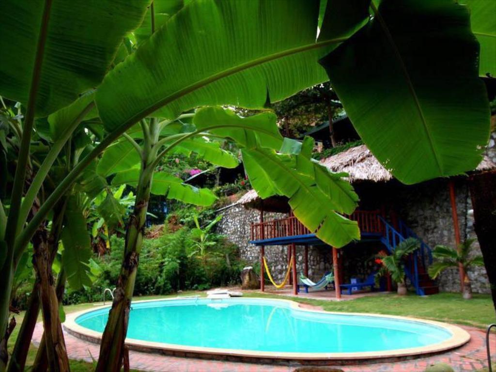 Plus de détails sur le Banana and Rose Homestay