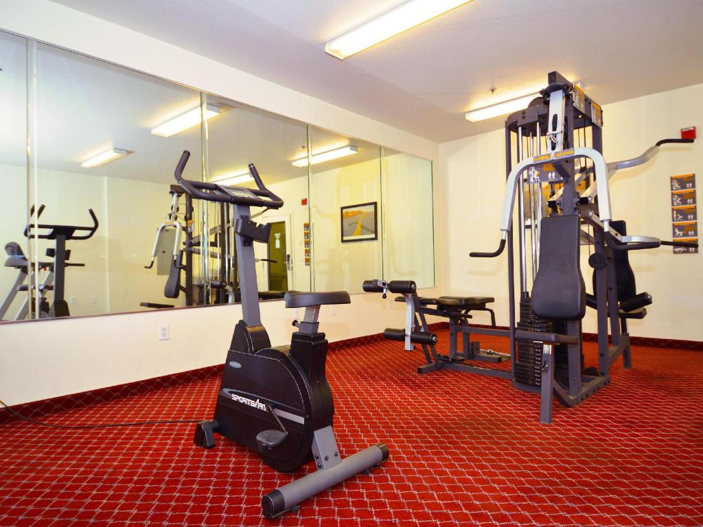 gimnasio Siegel Select Flamingo