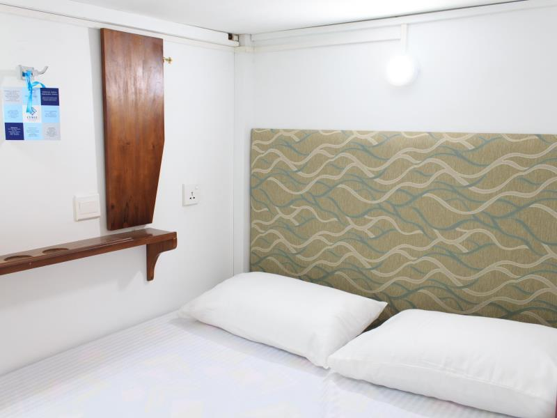 Double Capsule Bed in Mixed Dormitory Room