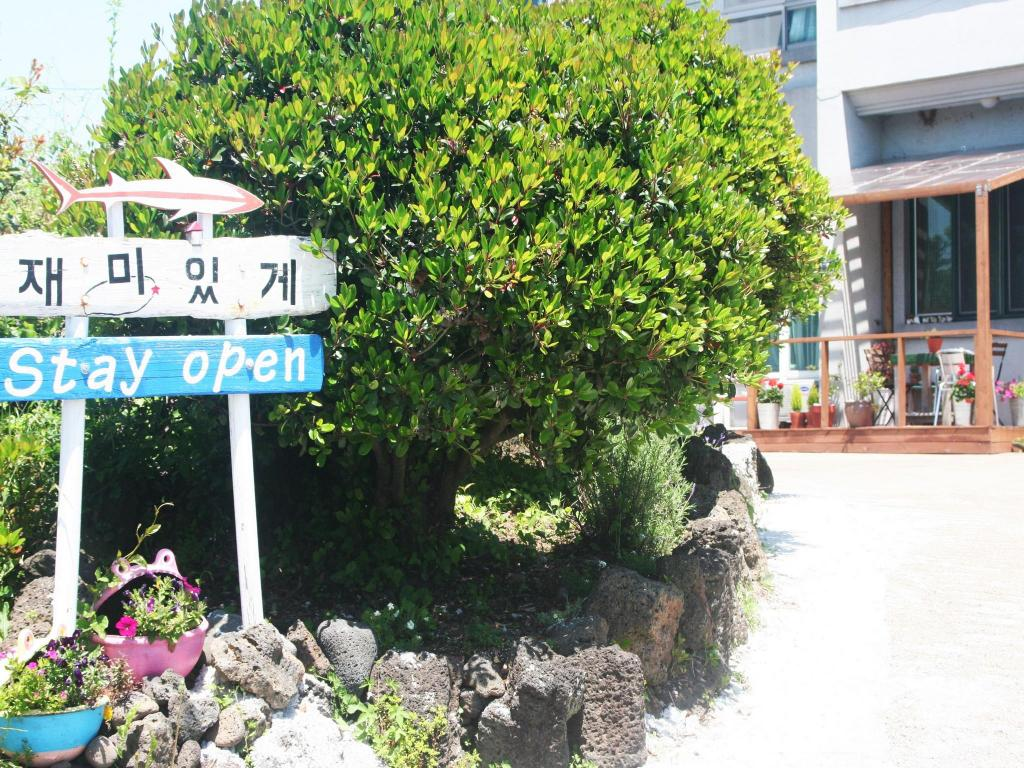 More about House of Joy in Jeju