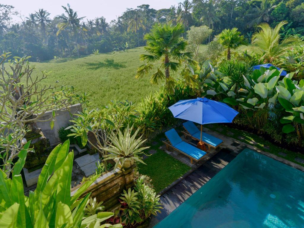 Dewi Sri Private Villa Resort Villa Bali Deals S