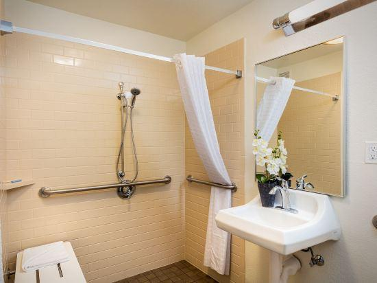 Studio Suite 1 Queen Accessible Roll In Shower Non-Smoking