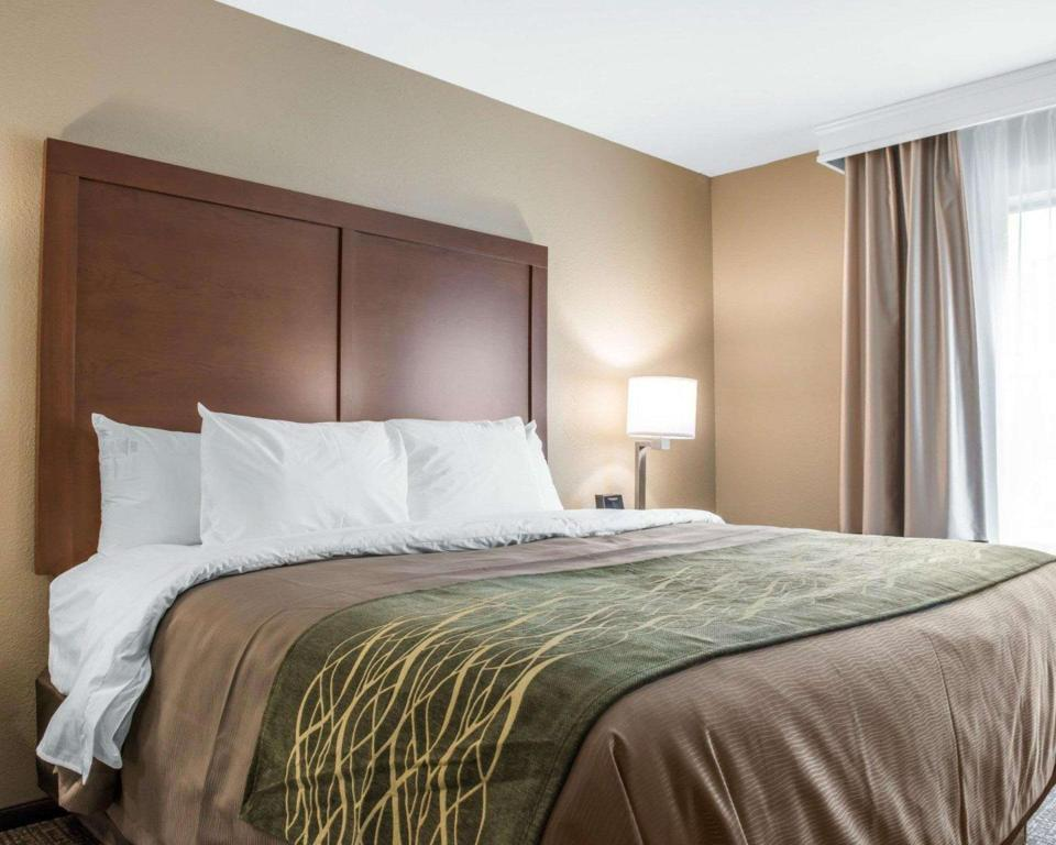 Pat king-size - Cameră de oaspeţi Comfort Inn And Suites Pittsburgh