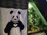 Loving Chengdu Youth Hostel