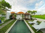 Anna Villa 4 with Padi-field View in Sanur