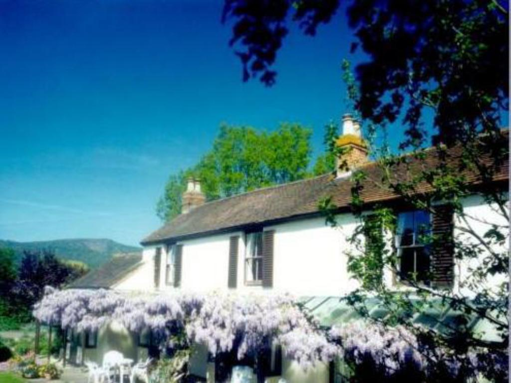 More about Holdfast Cottage Hotel