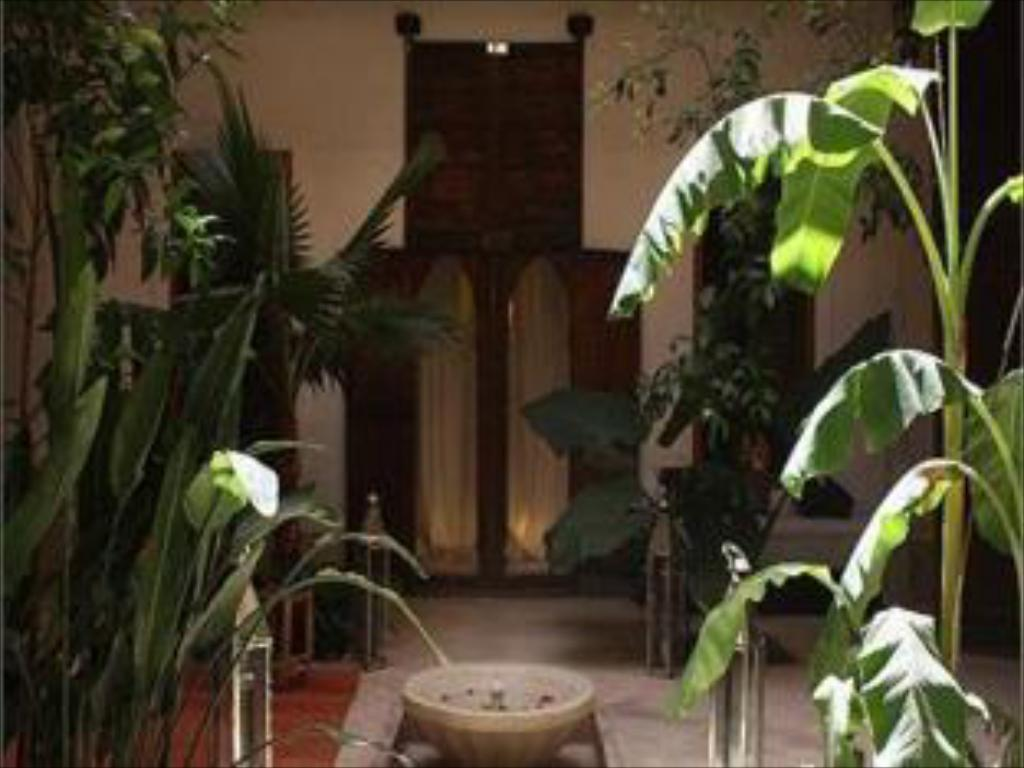 Hotellet indefra Riad Djebel
