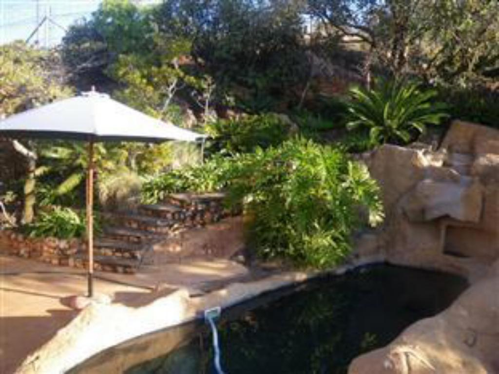 Swimming pool Aloe Guesthouse Pretoria