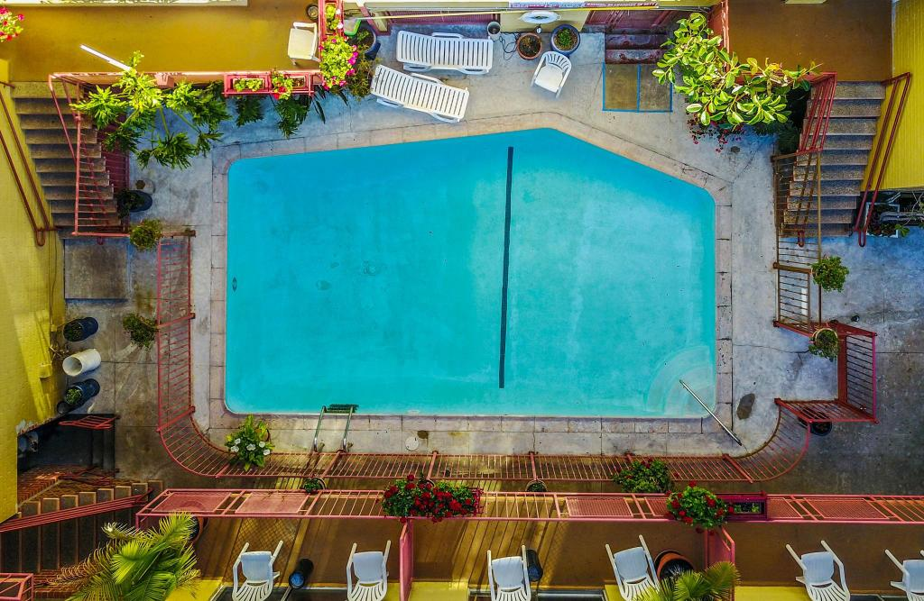 Best price on hollywood downtowner inn in los angeles ca - Best hotel swimming pools in los angeles ...