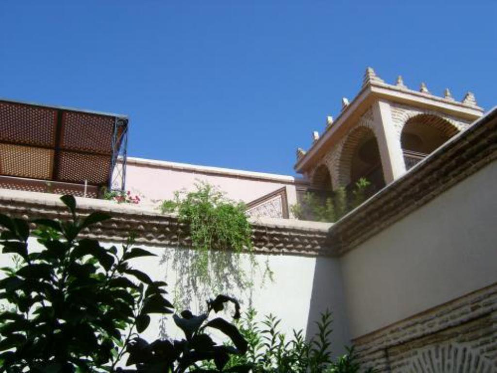 More about Riad Louaya