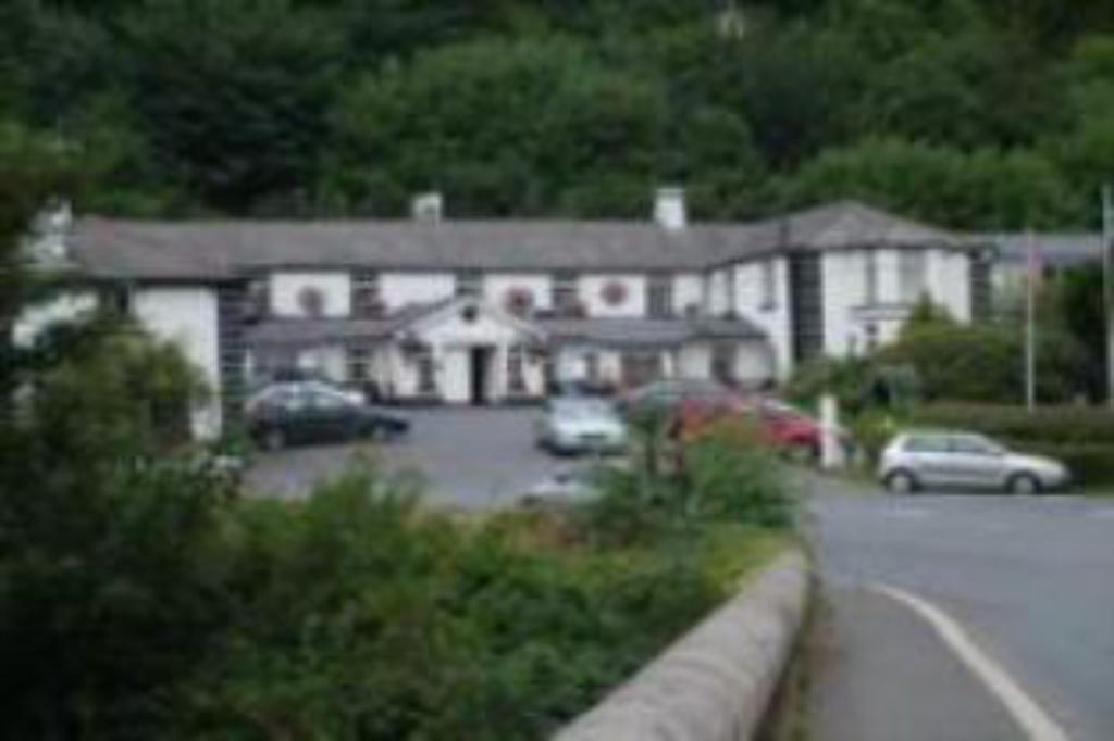 More about Woodenbridge Hotel