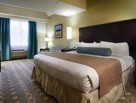 1 Bedroom King Suite Best Western Plus Fort Lauderdale Airport South Inn and Suites