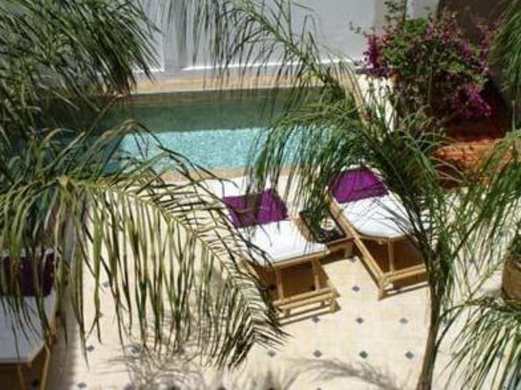 Swimming pool Riad Alma