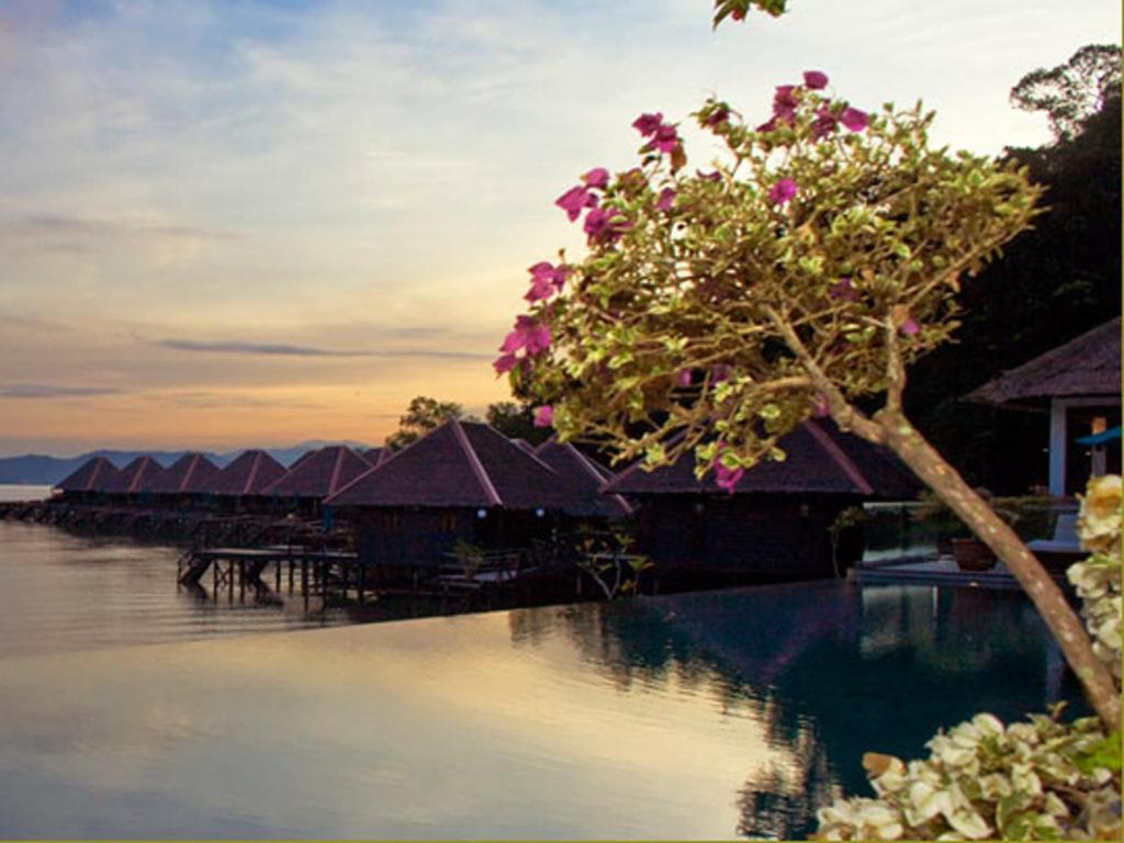 More about Gayana Marine Resort