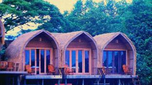 Bamboo Bungalows (Pet-friendly)