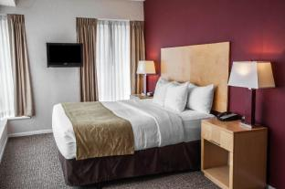 Comfort Suites Michigan Avenue - Loop