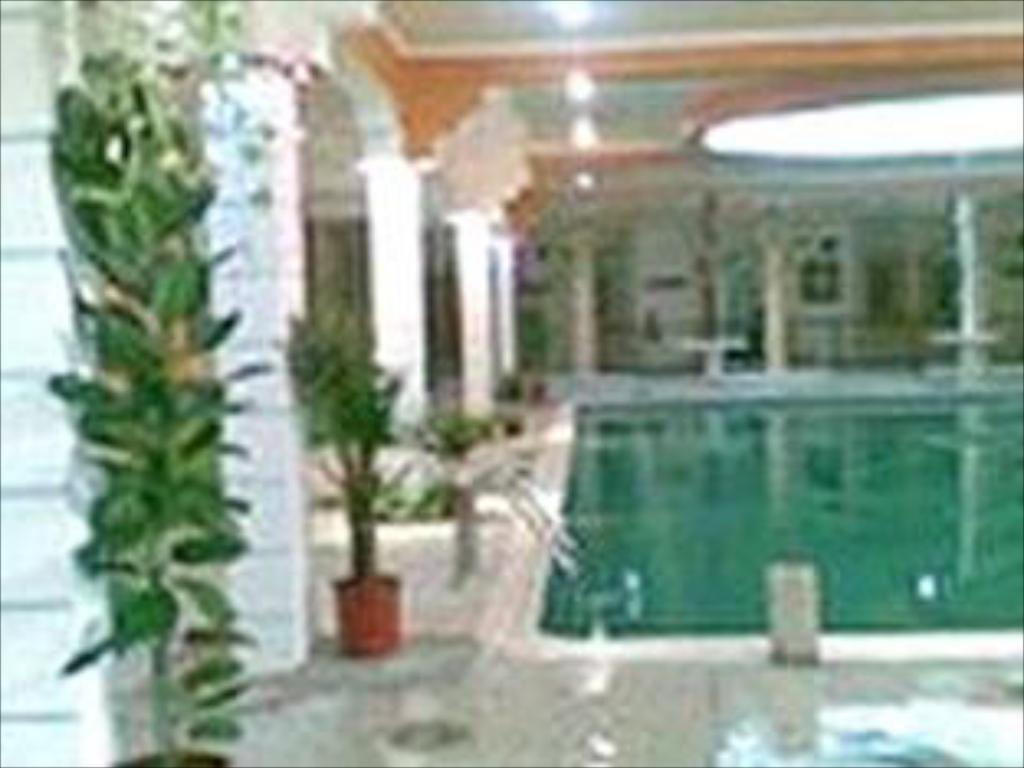 Swimming pool Bahrain Wellness Resort