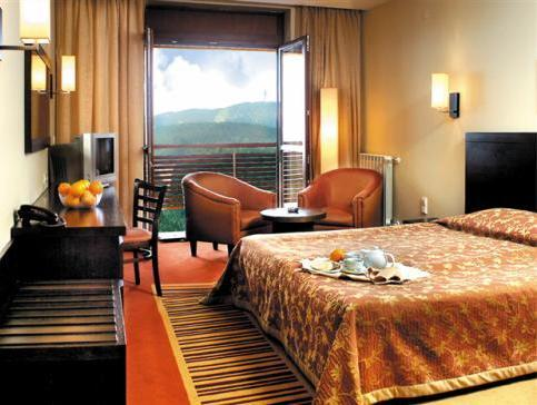 Bilik Double atau Twin dengan Pemandangan Gunung (Double or Twin Room with Mountain View)
