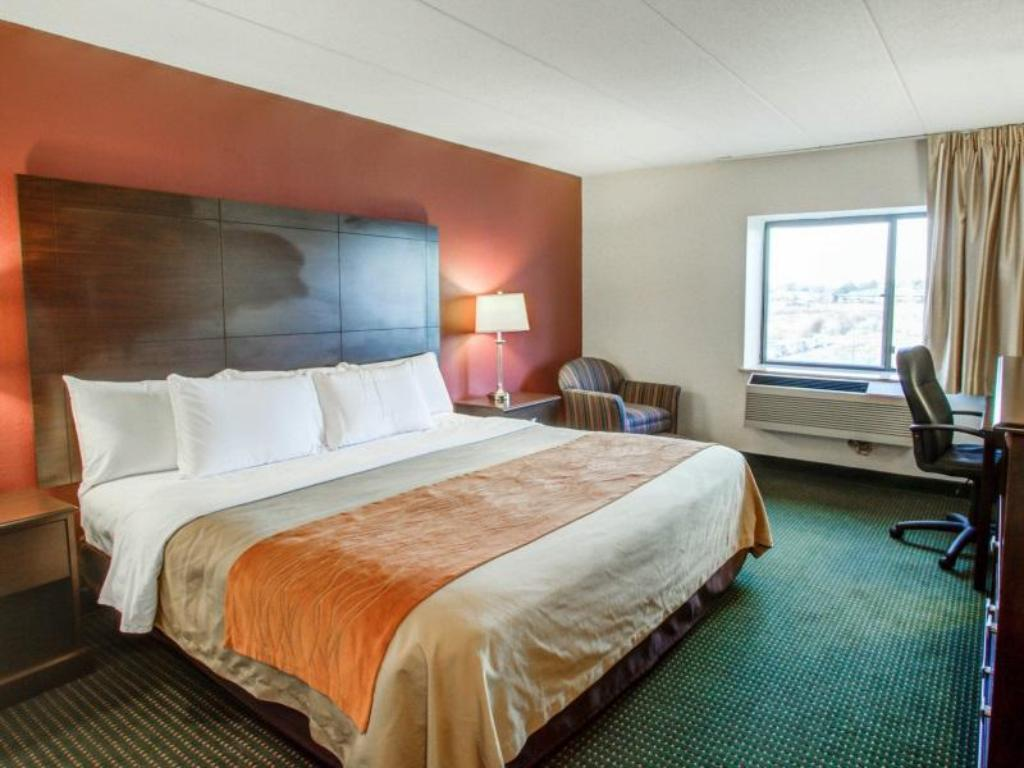 King Room - Bed Comfort Inn Airport