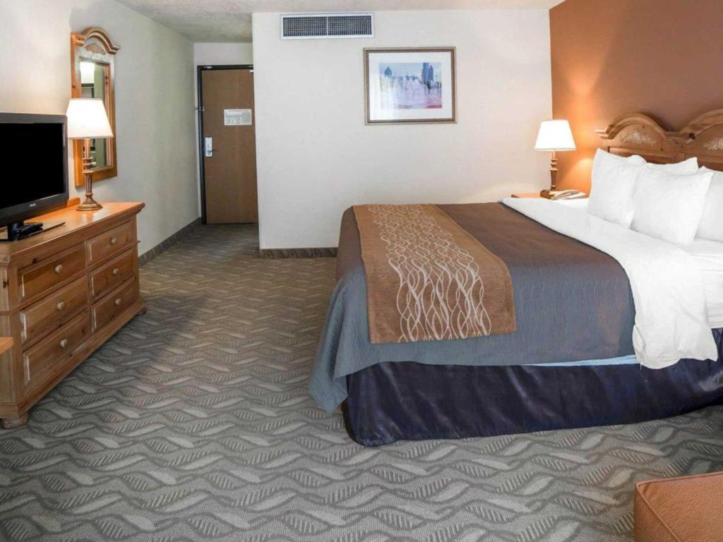 Standard with 1 King Bed - Bed Comfort Inn Downtown Salt Lake City