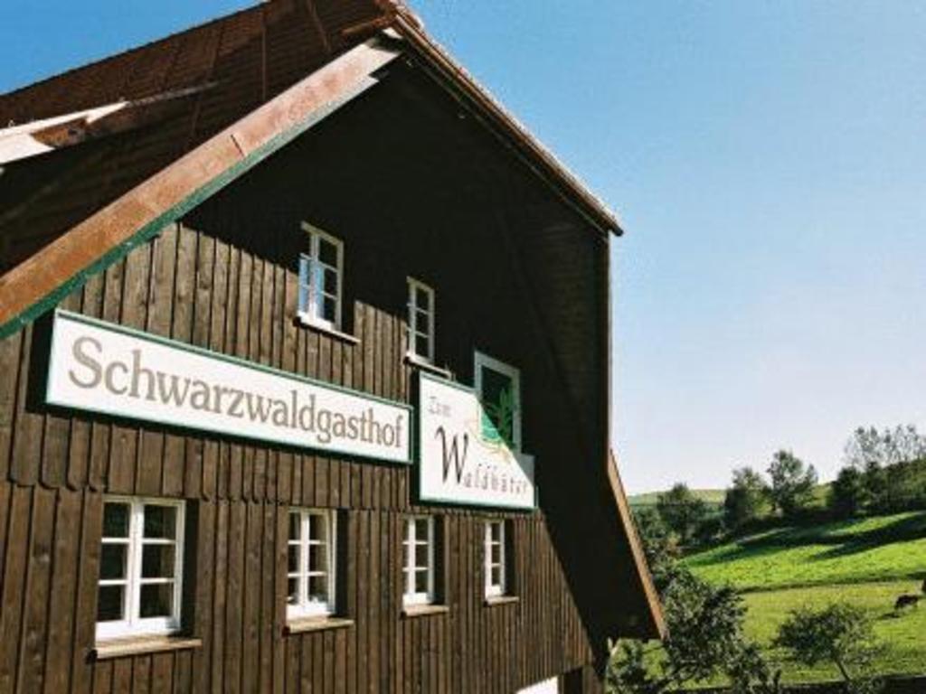 Single schopfheim