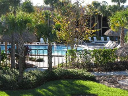 Swimming pool [outdoor] DoubleTree by Hilton Orlando at SeaWorld
