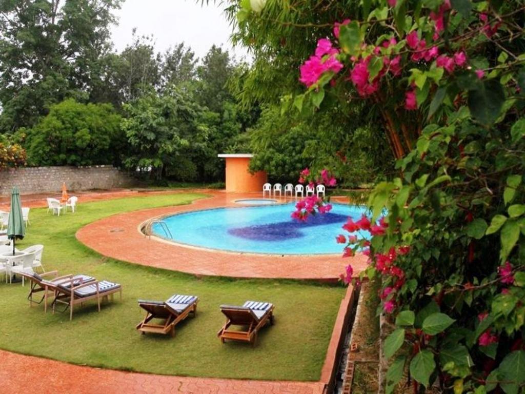 best price on the kings sanctuary resort in nagarhole reviews