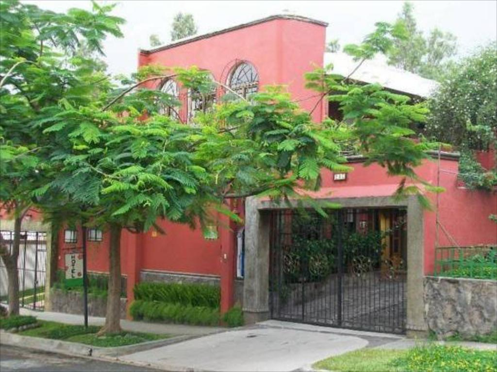 hotel arbol de fuego クチコミあり サン サルバドル