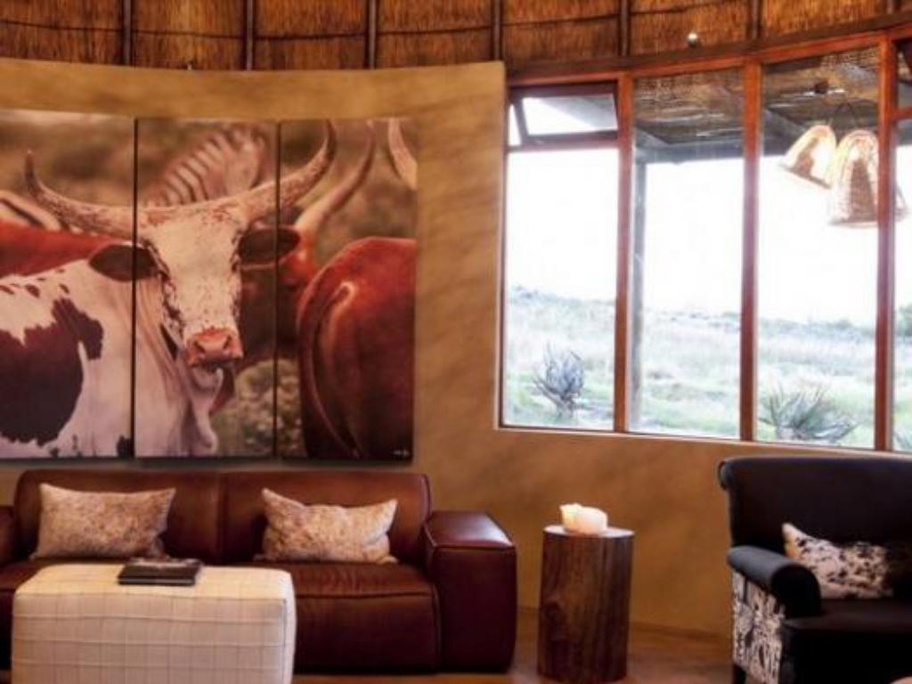 Ver as 40 fotos AHA Gondwana Game Reserve Hotel (Gondwana Game Reserve Hotel)