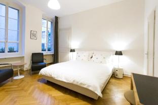 Spacious Studio Geneva Old Town (Central)