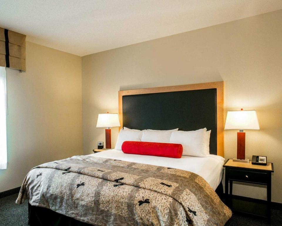 1 King Bed Whirlpool Suite Cambria hotel and suites Noblesville Indianapolis
