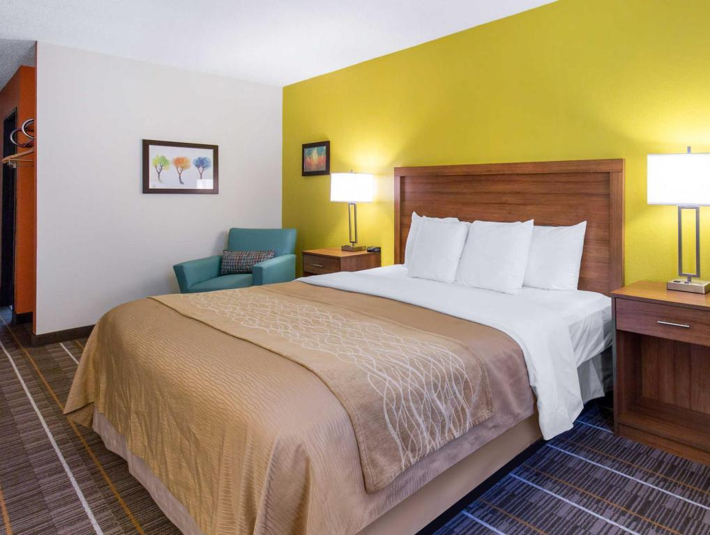 1 Llit King No Fumadors - Llit Comfort Inn Stephens City-Winchester South