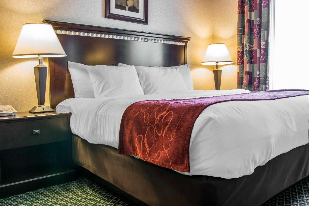 Standard with 1 King Bed - Bed Comfort Suites Canton
