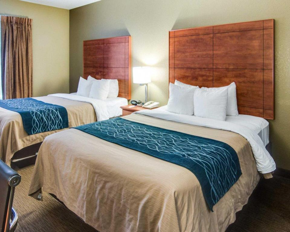 Suite 2 Queen Betten - Bett Comfort Inn & Suites