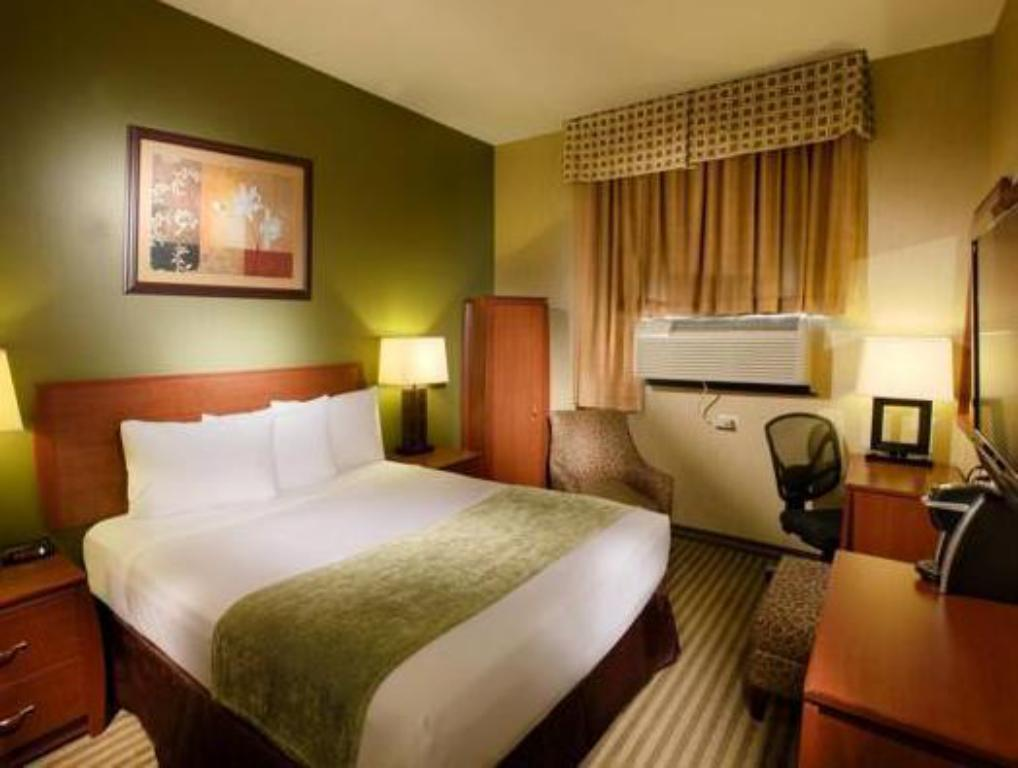 Queen Room - Guestroom Hotel Q New York
