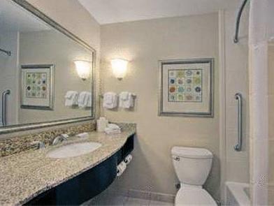 Nice King Room Hilton Garden Inn Merrillville