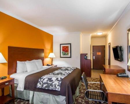 King Room - Non-Smoking Sleep Inn & Suites I-20