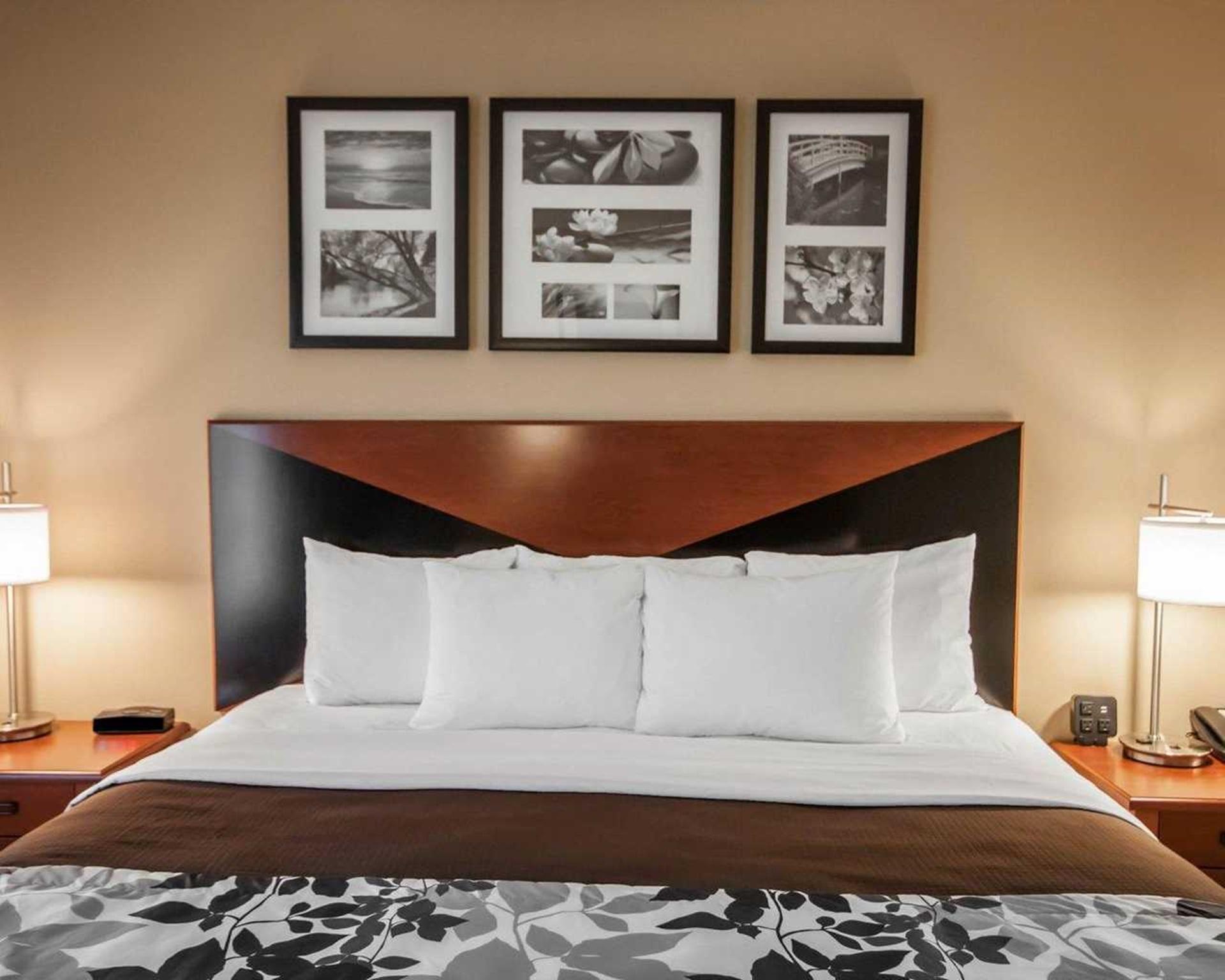 Sleep Inn & Suites Idaho Falls Hotel (Idaho Falls (ID)) - Deals, Photos &  Reviews
