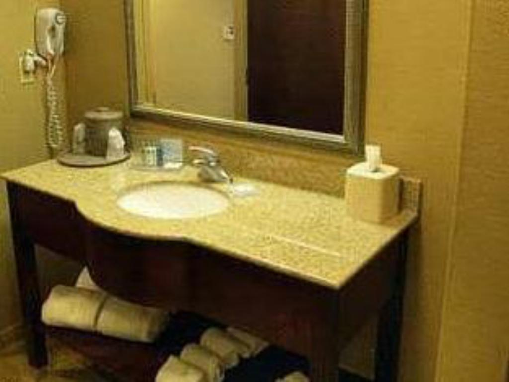 King Room - Bathroom Hampton Inn & Suites Opelika - I-85 - Auburn Area