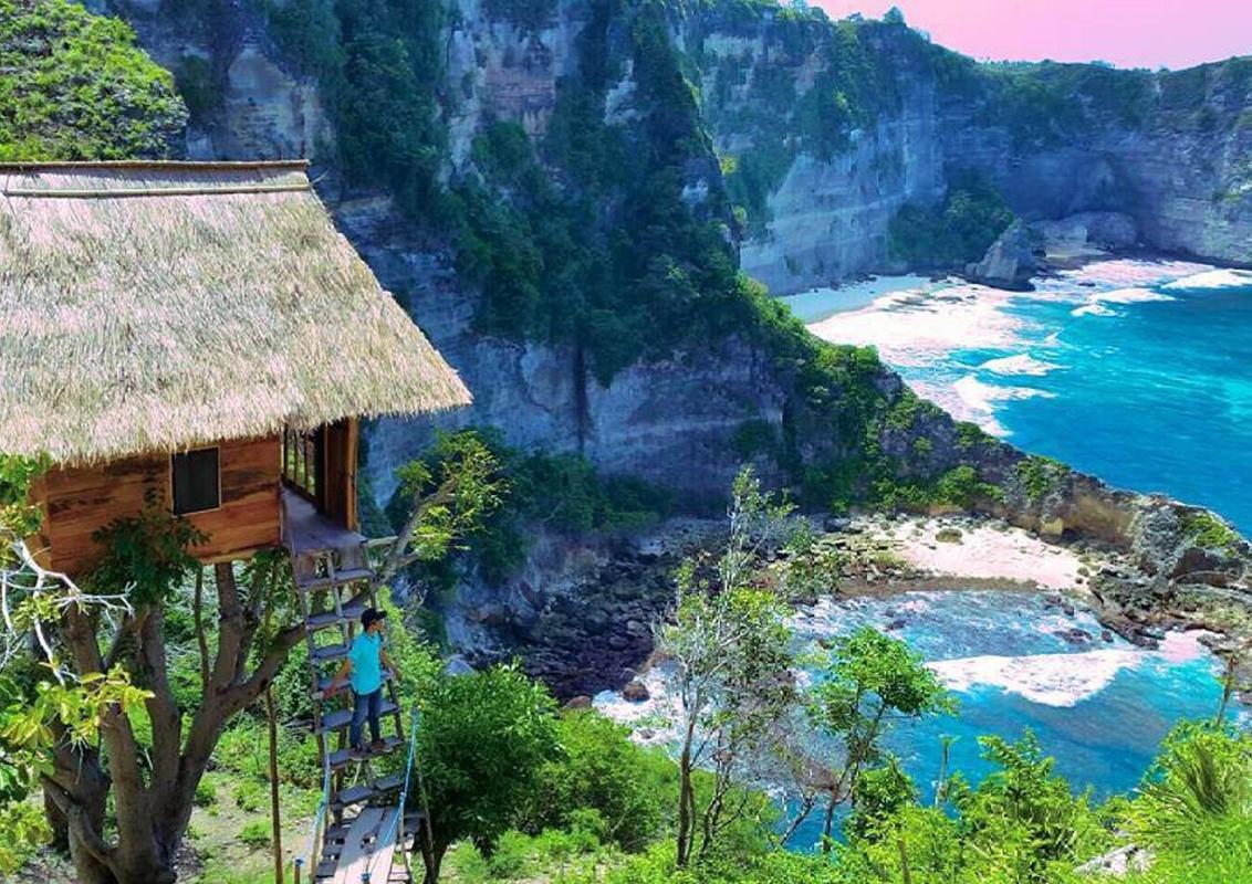 Rumah Pohon Tree House Entire House Bali Deals Photos Reviews