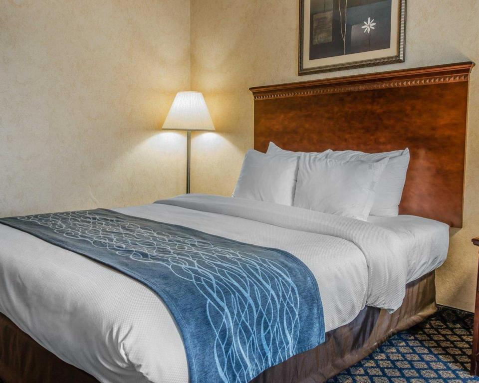 Standard Queen Quality Inn & Suites Coldwater