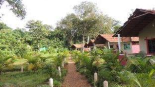Jungle Nest Homestay - Dandeli (Pet-friendly)
