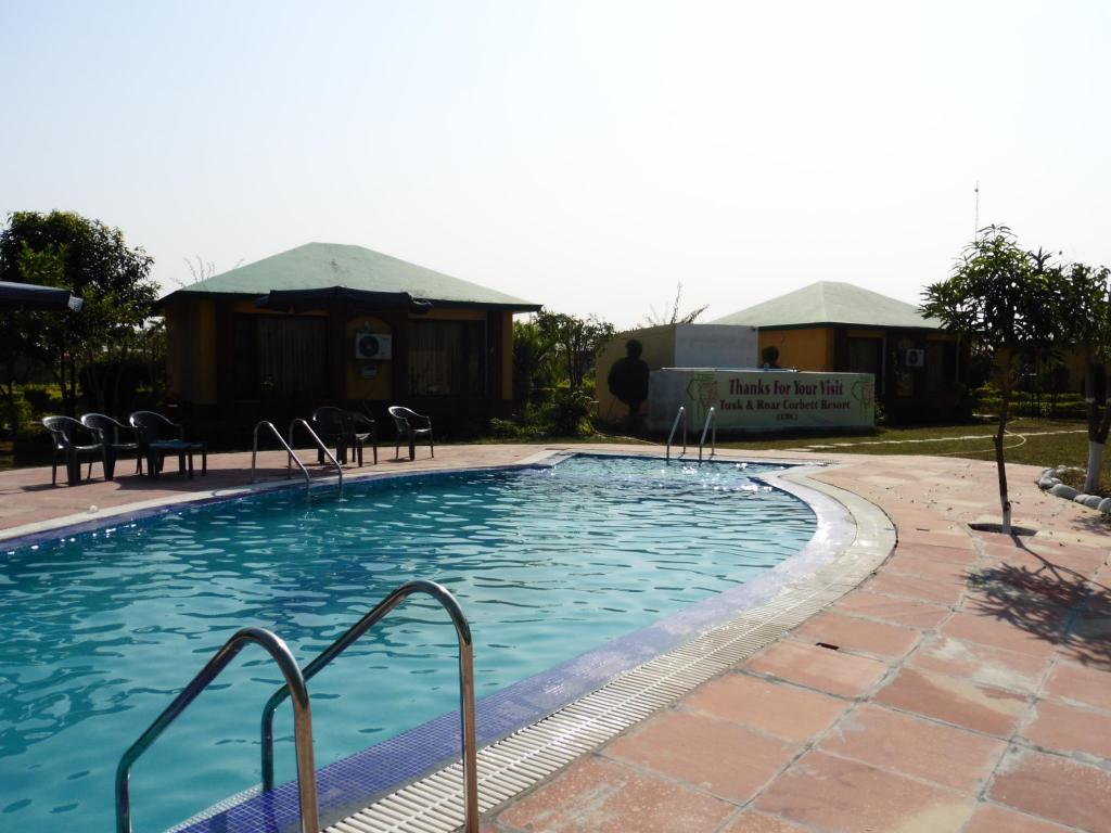 Swimming pool Tusk and Roar Corbett Resort, Dhela, Uttarakhand, India