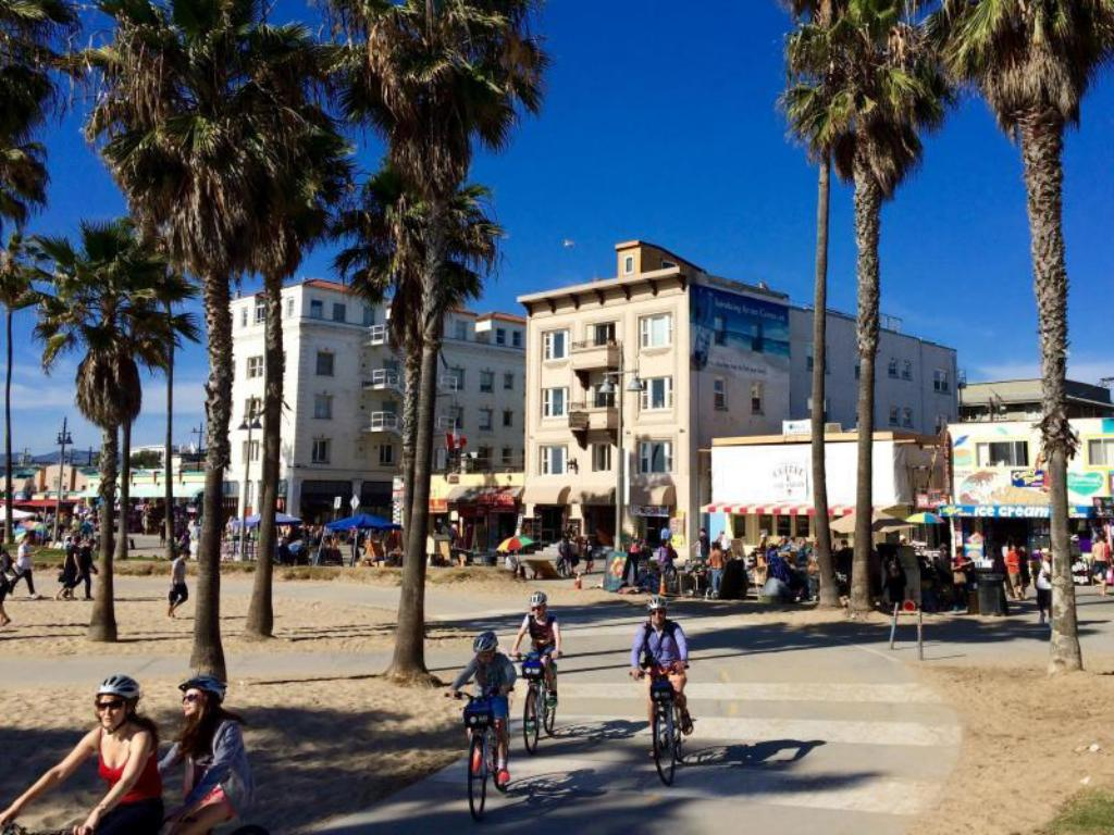 More About Venice Beach Suites And Hotel